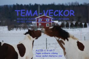 TEMA-VECKOR